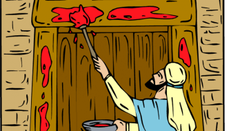 What are the Ten Passover Plagues?